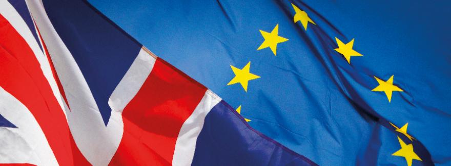 https://financien.belgium.be/nl/douane_accijnzen/ondernemingen/brexit